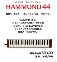 H-44.jpg